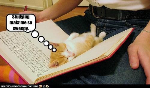 Studying makz me so sweepy.