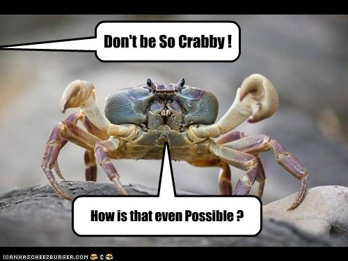 demands improbable crabs puns possible crabby