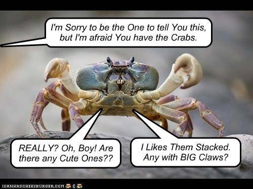 I'm Sorry to be the One to tell You this, but I'm afraid You have the Crabs. REALLY? Oh, Boy! Are there any Cute Ones?? I Likes Them Stacked. Any with BIG Claws?