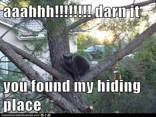 aaahhh!!!!!!!! darn it  you found my hiding place
