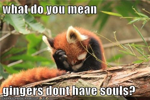 what do you mean gingers dont have souls? - Animal Comedy