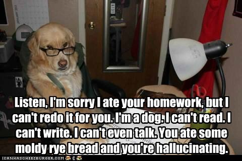 Listen, I'm sorry I ate your homework, but I can't redo it for you. I'm a dog. I can't read. I can't write. I can't even talk. You ate some moldy rye bread and you're hallucinating.