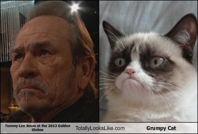 golden globes 2013 Grumpy Cat tommy lee jones