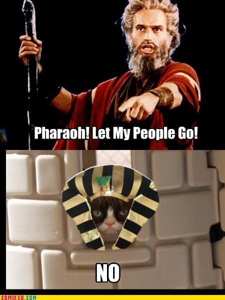 Pharaoh no Grumpy Cat - 6971160064