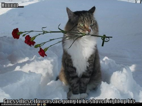Hmmm.....  Guess these flowers are going to be shoved right up his....