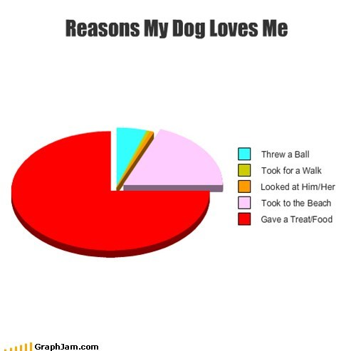 pets food dogs Pie Chart - 6971566080