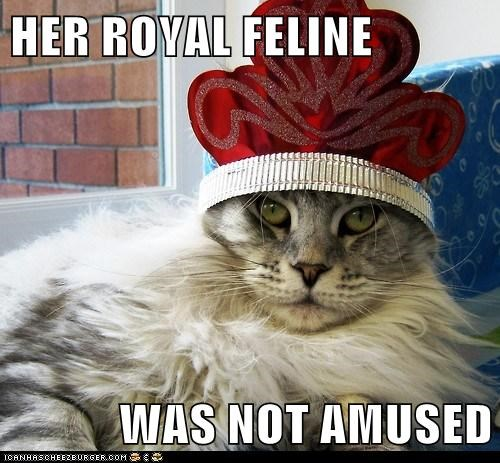HER ROYAL FELINE  WAS NOT AMUSED
