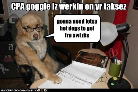 CPA goggie iz werkin on yr taksez gonna need lotsa hot dogs to get fru awl dis