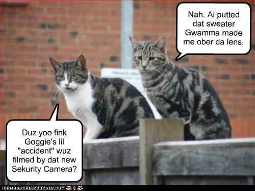 "Duz yoo fink Goggie's lil ""accident"" wuz filmed by dat new Sekurity Camera? Nah. Ai putted dat sweater Gwamma made me ober da lens."