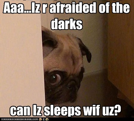 Aaa...Iz r afraided of the darks can Iz sleeps wif uz?