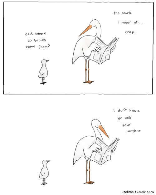 sex,stork,birds and the bees,comic