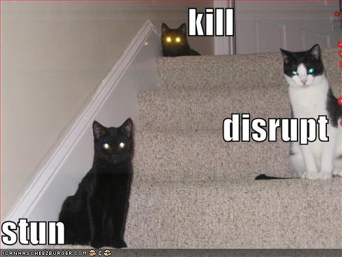 basement cat,disrupt,evil,kill,lolcats,stairs,stun