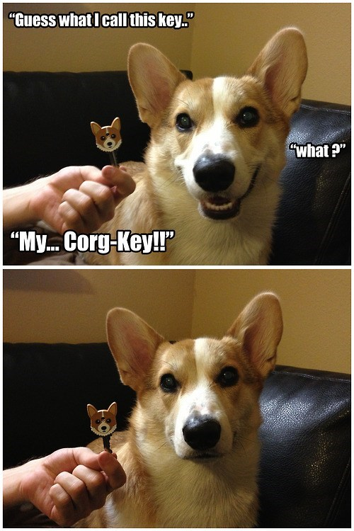 topper not impressed corgi key dogs suffix - 6972785920