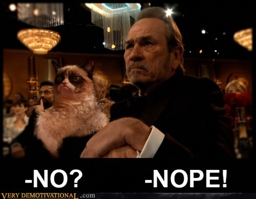 angry cat tommy lee jones