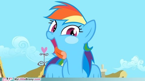 Rainbow Dash is licking your screen