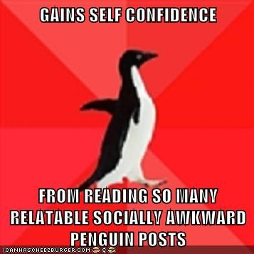 socially awkward penguin,self confidence,socially awesome penguin
