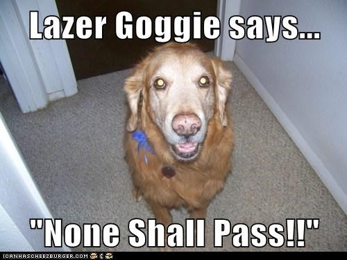 "Lazer Goggie says...  ""None Shall Pass!!"""