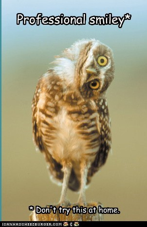 head tilt,owls,professionals,smileys
