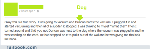 duncan the dog dogs vacuum