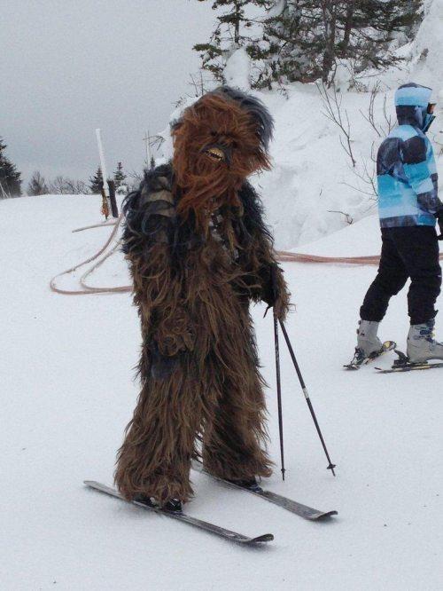 costume star wars creepy wookie skiing