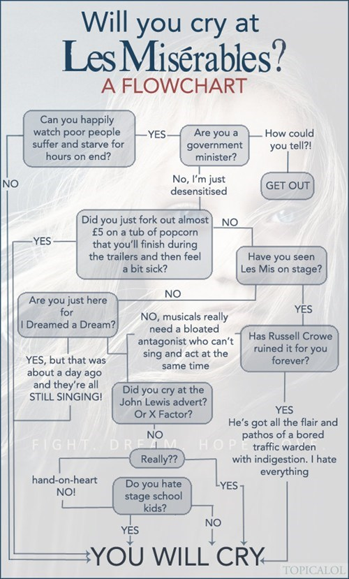 cry les miserable Movie flow chart - 6975533056