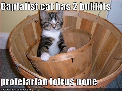 bukkit capitalism cute kitten lolcats lolkittehs lolrus smug - 697567488