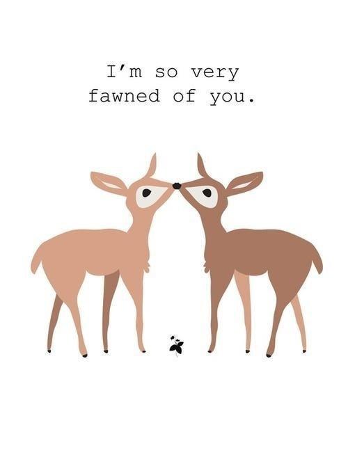 deer homophones love fond fawn - 6975681792