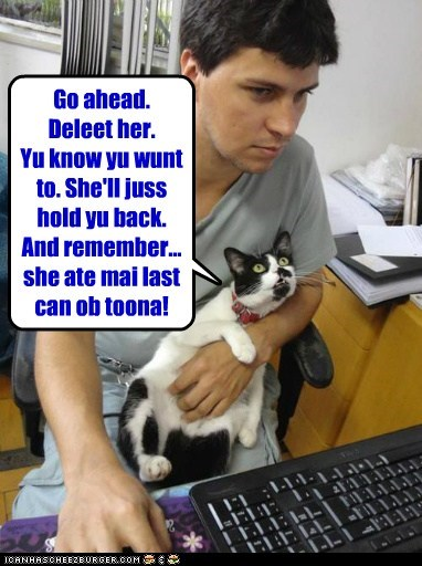 cat relationship girlfriend funny