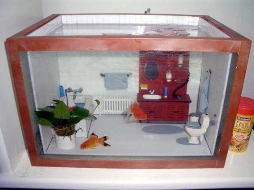 design aquarium fish tank cute g rated win - 6975867392