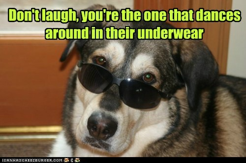 dancing,dogs,sunglasses,embarrassing,what breed,underwear