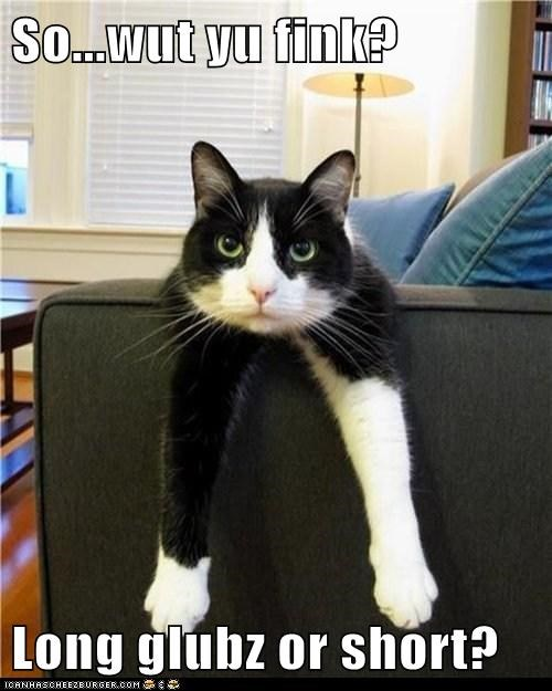 cat fashion gloves tuxedo advice funny - 6976263168