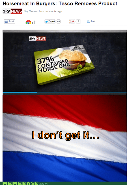 Horse Meat,Netherlands,burgers