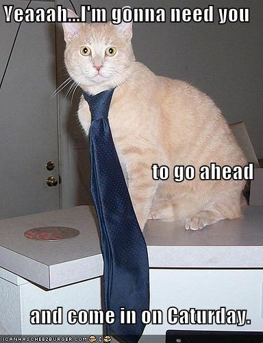 boss Caturday lolcats Office Space tie - 697697536