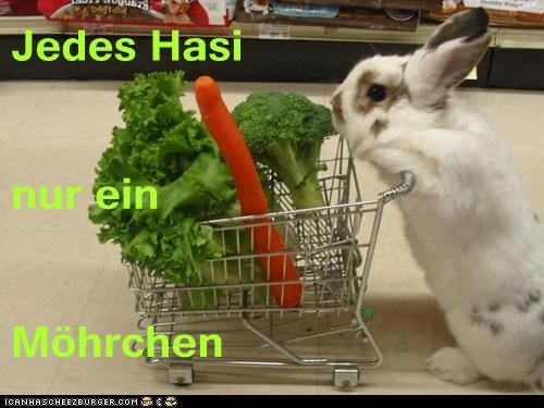 Cheezburger Image 6977025792