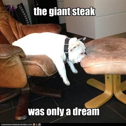 chair steak dream bulldog leather - 6977162496