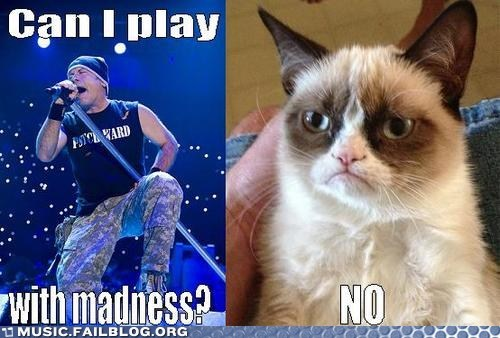 adrian smith,madness,Grumpy Cat