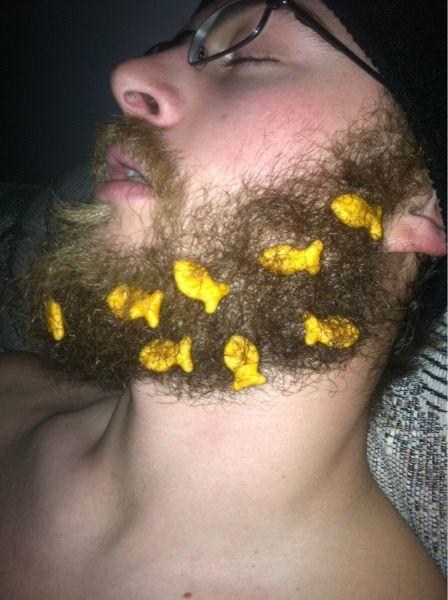 beard,sleeping,goldfish crackers