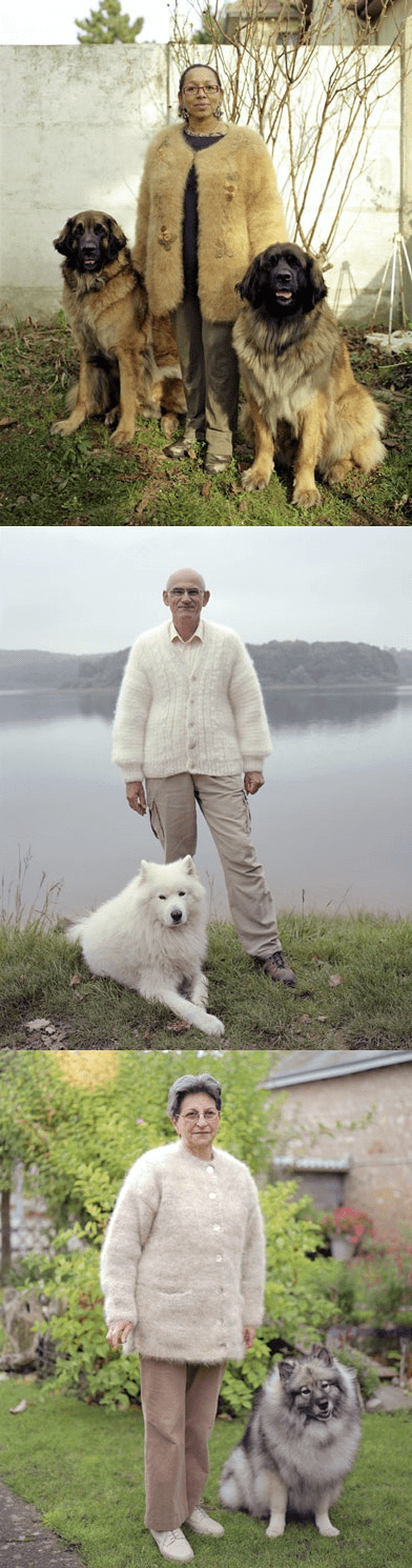 fur dogs jacket photos coat owners clothing - 6977595136