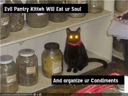 condiments,evil,lolcats,nom nom nom,pantry,zombie apocalypse