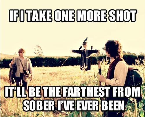 hobbits one more shot Lord of the Rings Sam - 6977891840