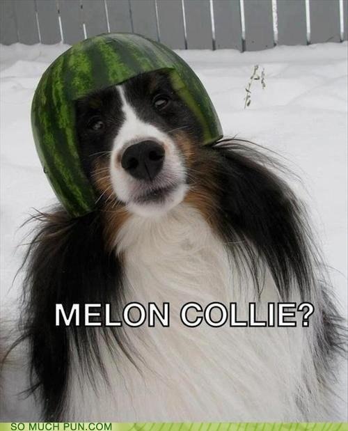 melon smashing pumpkins melancholy - 6978170368