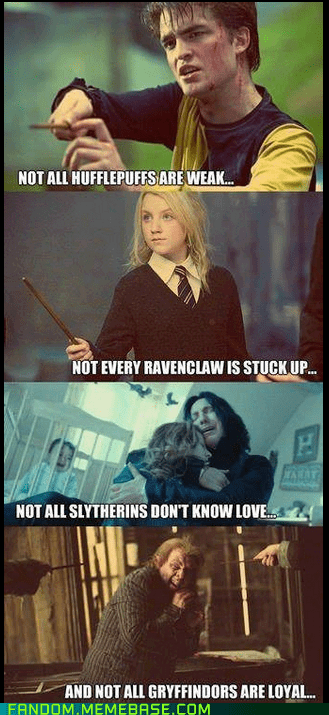 Harry Potter movies books stereotypes - 6978999040