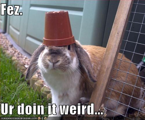 bunny,cute,FEZ,lolbunnehs,pot