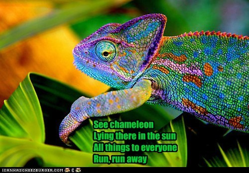 See chameleon Lying there in the sun All things to everyone Run, run away