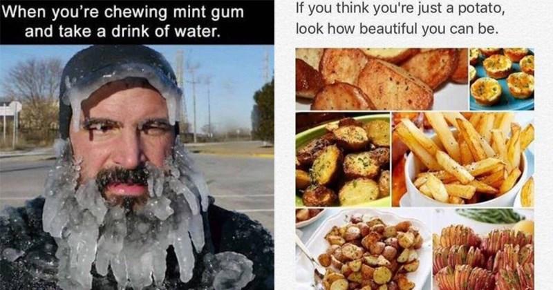funny memes, beard frozen in ice