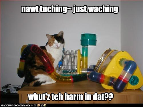 nawt tuching~ just waching