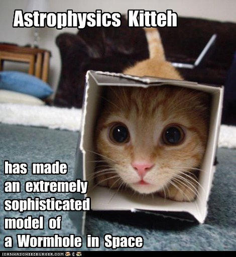 Astrophysics Kitteh has made an extremely sophisticated model of a Wormhole in Space