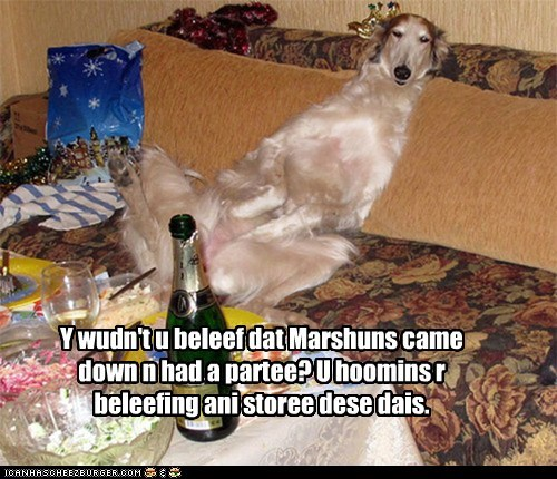 Y wudn't u beleef dat Marshuns came down n had a partee? U hoomins r beleefing ani storee dese dais.