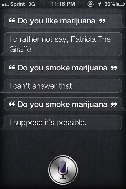 busted drugs marijuana aha siri - 6981221376