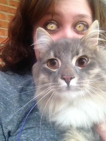 cat shopped pixels creepy - 6981404160